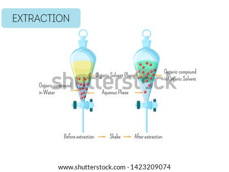 Chemical extraction of organic compound from water solution to organic solvent diagram. Educational chemistry for kids. Cartoon style vector illustration.