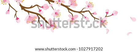 stock-vector-cherry-blossom-branch-and-falling-petals