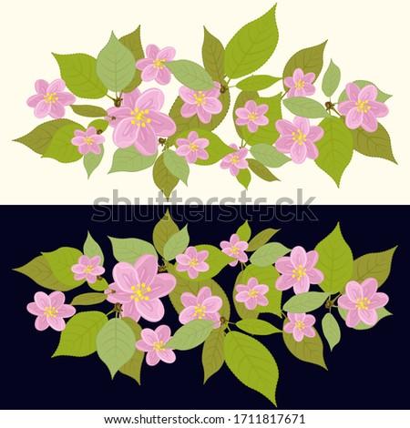 cherry blossom composition