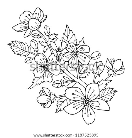 Cherry blossom flowers and branch vector illustration. Drawing for the coloring book or page for kids or adults. #1187523895