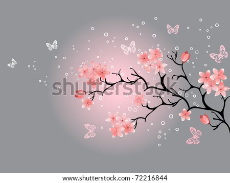 cherry blossom, grey background