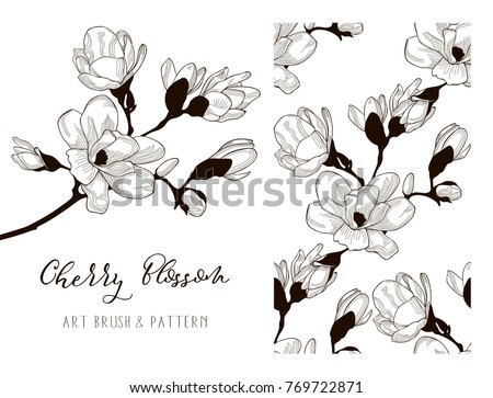Cherry Blossom Hand Drawn Flower . Floral Design Element. Object, Color adjustable Flexible Art Brush and Seamless Pattern. Vector Illustration #769722871
