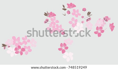 Cherry blossom pattern.Sakura flower on gray background.