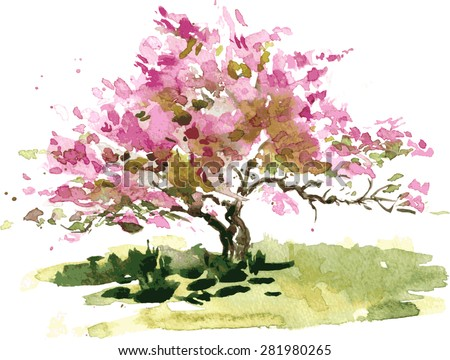 cherry blossom tree drawing by watercolor aquarelle sketch of blooming apple blossoms painting garden