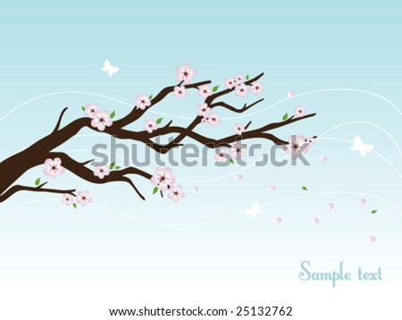 cherry blossom branch drawing. cherry tree drawing in