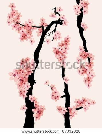 cherry blossom vector design