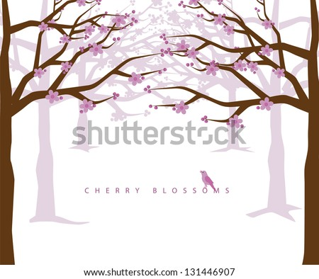 cherry blossoms eps 8 vector
