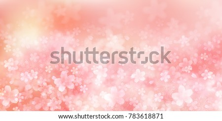 Cherry blossoms Flowers Spring background