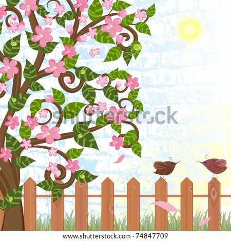 cherry blossoms near the fence