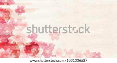 cherry blossoms spring flower