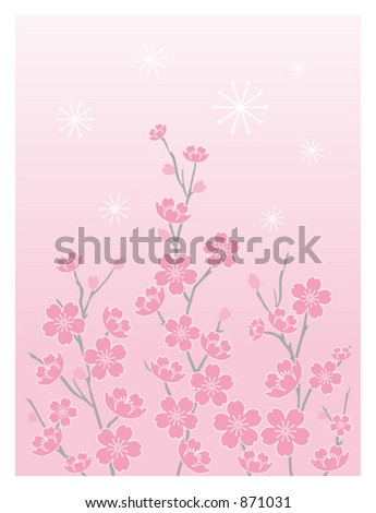 Cherry Blossoms Vector - Vertical with Graduated Background