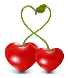 cherry couple in vector, contains gradient mesh elements