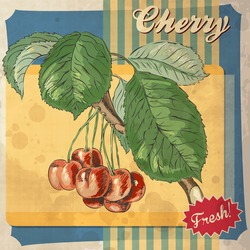 cherry fruit vintage food art poster cover template wallpaper old scrapbook retro card design with cherry cherry fruit vintage food art poster cover template wallpaper old scrapbook classic texture ha