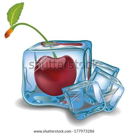 cherry in ice cube vector