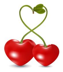 cherry love in vector
