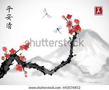 cherry sakura tree branch in