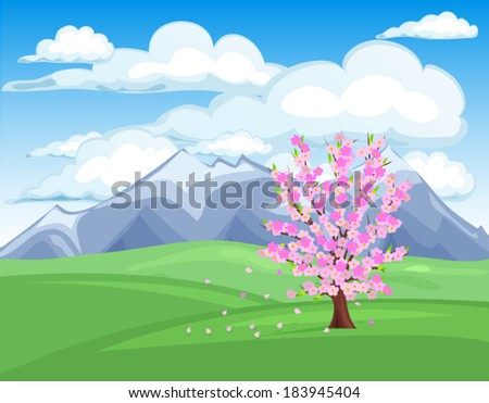 cherry tree blossom in