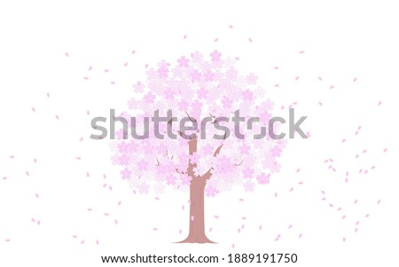Cherry tree in full bloom and snowstorm, illustration material Foto stock ©