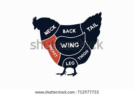 Chicken Cuts Diagram Vector Download Free Vector Art Stock