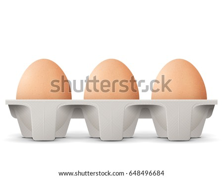 Chicken eggs in carton egg box isolated on white background. Cardboard egg tray with brown eggs, front view. Best vector illustration for bird eggs, food, poultry farming, gastronomy, cooking, etc