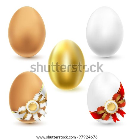 Chicken eggs isolated on white background. Vector.