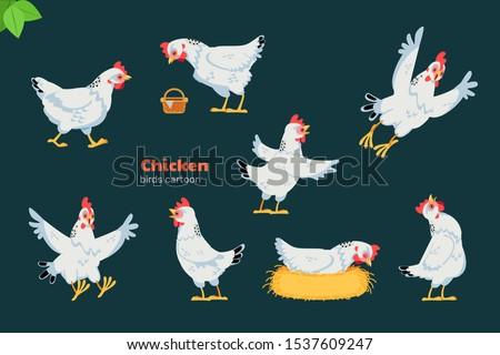 chicken or hen cartoon