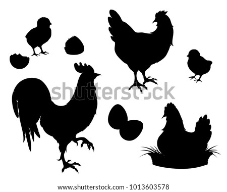 Chicken, rooster, chickens and eggs.Chicken farm set black silhouettes. Isolated elements of the illustration.Vector EPS 10
