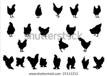 chicken silhouettes,  collection for designers