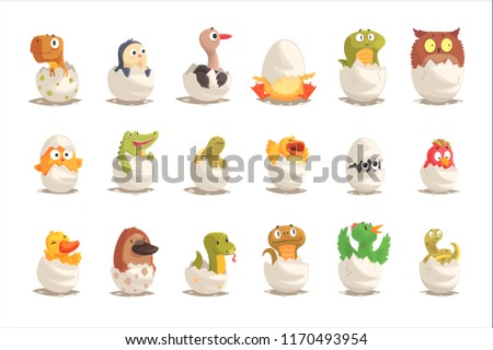 chicks and reptiles hatch from