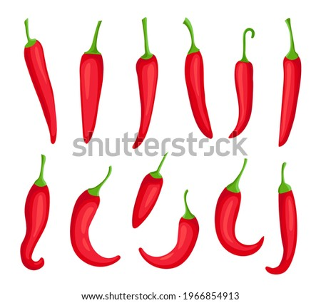 Chili peppers. Cartoon spicy hot red pepper. Cayenne and capsaicin spice ingredient for chilli sauce. Mexican pepper logo element vector set. Burning organic seasoning for food cooking Stock photo ©