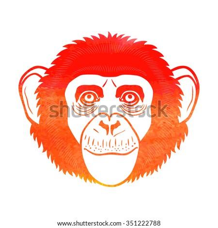 Chimpanzee. Chimpanzee sign, Chimpanzee logo. Chimpanzee isolated on white background.