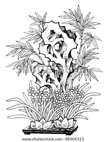 garden plant tattoo vector