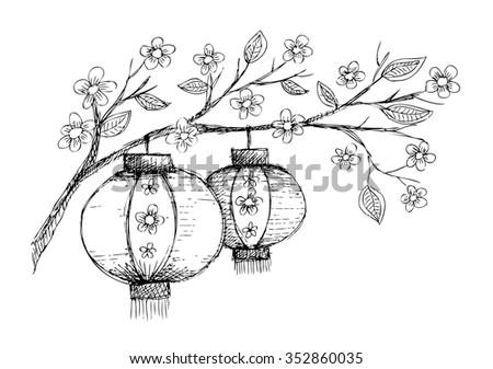 chinese lantern hang on tree