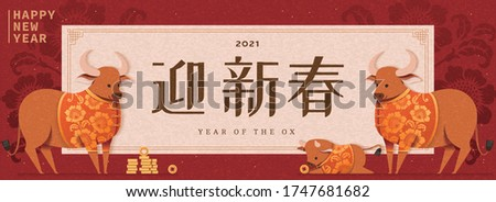 Chinese new year banner, bulls wearing traditional costumes to celebrate the festival, Chinese translation: Welcome the arrival of the new lunar year