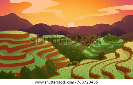 chinese rice field terraces in