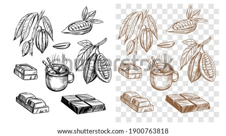 Chocolate bar, cocoa bean, hot chocolate. Set of outline illustrations. Vector on transparent background