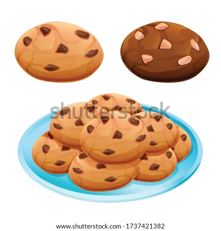 chocolate chip cookie and choco