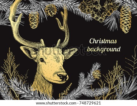 christmas and new year background with deer different branches and cones fir tree