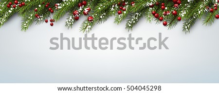 Christmas banner with fir branches and holly berries. Vector illustration. #504045298