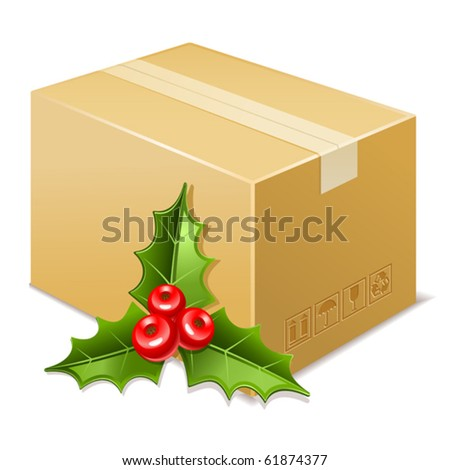 Christmas box icon. Mistletoe