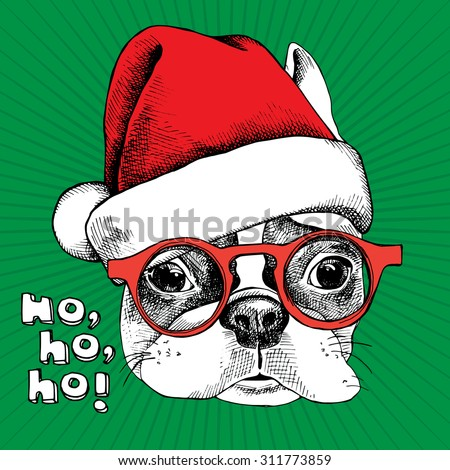 christmas card portrait of