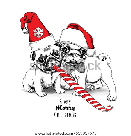 christmas card puppies pugs in
