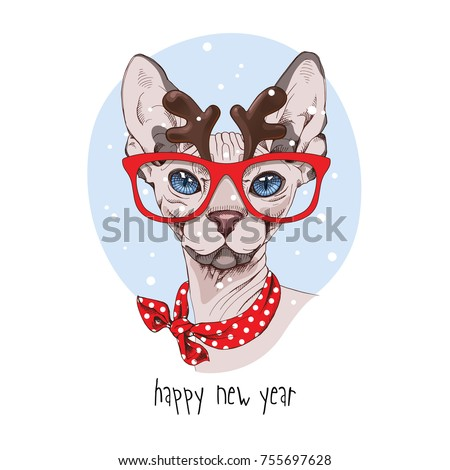 christmas card sphynx cat in a