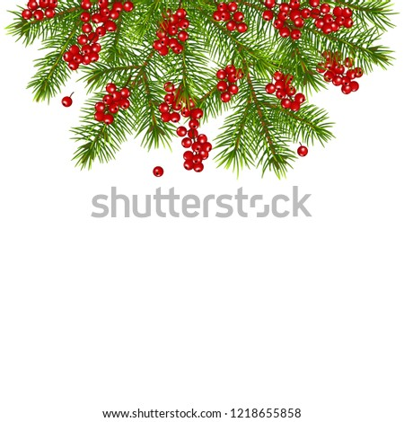 Christmas decoration with fir tree branches red berries, isolated on white background. #1218655858