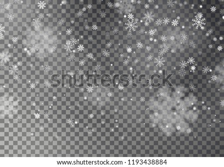 Christmas falling snow vector isolated on dark background. Snowflake transparent decoration effect. Xmas snow flake pattern. Magic white snowfall texture. Winter snowstorm backdrop illustration. - Shutterstock ID 1193438884