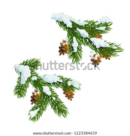 Christmas fir and pine tree branches covered with snow. Merry Christmas and Happy New Year vector Xmas tree decoration with cones and snowflakes
