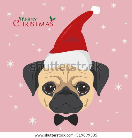 christmas greeting card pug