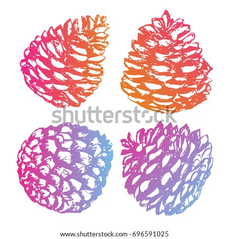Christmas hand drawn pine cones collection. Modern gradient. Cedar cone set. Sketchy style. Unusual. For your project.
