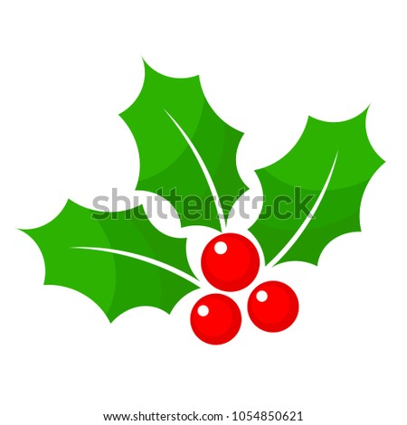 Christmas holly berry flat icon in cartoon style on white, stock vector illustration