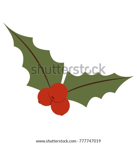 Christmas holly berry flat icon. Vector illustration isolated on a white background.